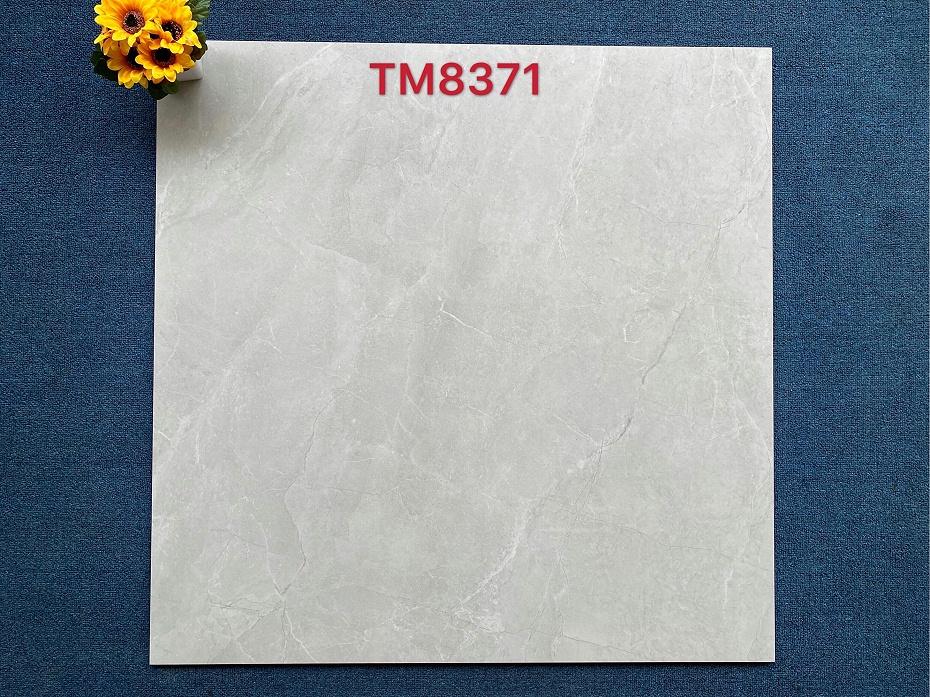 TM8371