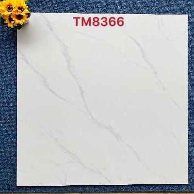 美之彩80X80通体抛釉砖全新上市TM8366