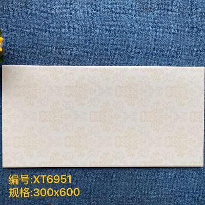 心水300X600糖果釉XT6951