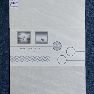 新品牌诚格300X600新品瓷片CG801A-802B