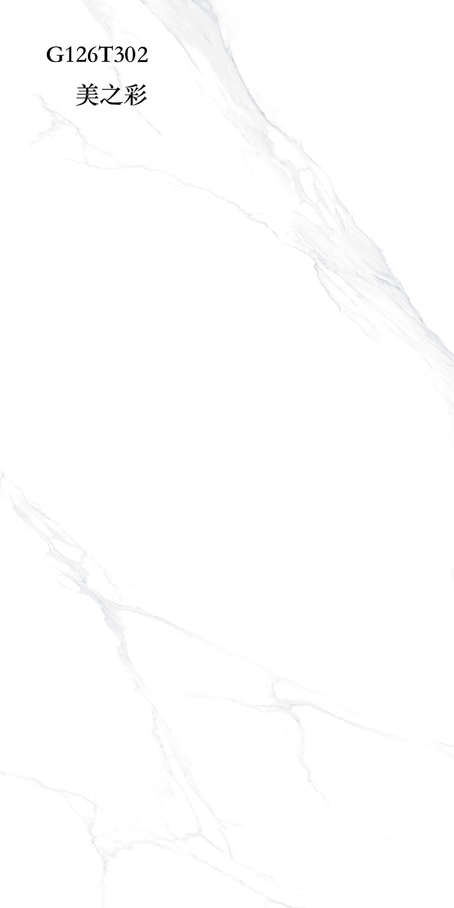G126T302-