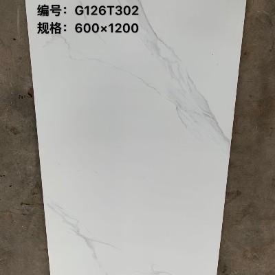 美之彩负离子大理石600X1200-G126T302
