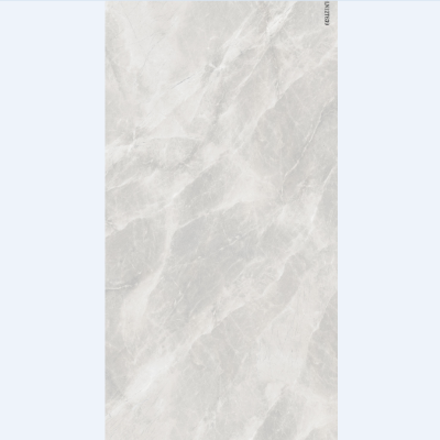 瓷砖大板·12T639